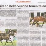 Bea paardenkrant 1
